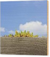 Plant For Fence Wood Print