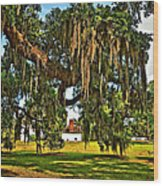Plantation Wood Print by Steve Harrington