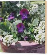 Planter Of Purple Pansies And White Alyssum Wood Print