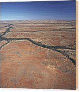 Plants Grow Along Desert River Drainage Wood Print