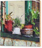 Plants On Porch Wood Print