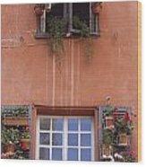 Plants On Window Sill Wood Print
