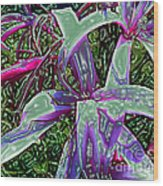 Plasticized Cape Lily Digital Art Wood Print