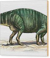 Plateosaurus Engelhardti, A Prehistoric Wood Print
