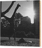 Playing With The Sun II - Philadelphia - Pensilvania - Sunset Wood Print