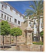 Plaza De La Iglesia In Marbella Wood Print