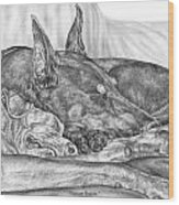 Pleasant Dreams - Doberman Pinscher Dog Art Print Wood Print by Kelli Swan