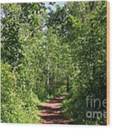 Pleasant Trail Wood Print