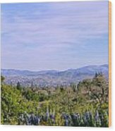 Pleasanton Preserve Wood Print