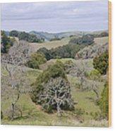 Pleasanton Ridge - North Wood Print