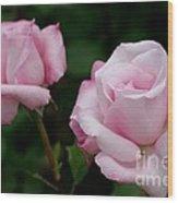 Pleasurable Pink Wood Print