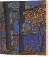 Plein Air 102 Wood Print