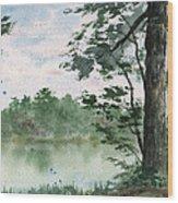 Plein Air 11 Wood Print