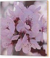 Plum Blossoms 4 Wood Print