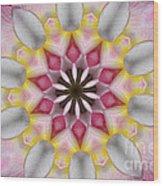 Plumeria 3 Wood Print