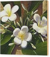Plumeria Wood Print by Anne Wertheim