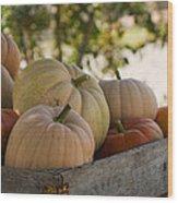 Plump And Purdy Pumpkins Wood Print
