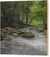 Pocantico River In The Rain Wood Print