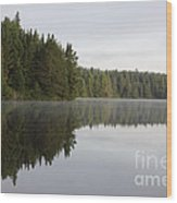 Pog Lake Tree Line Wood Print by Chris Hill