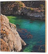Point Lobos State Reserve California Wood Print by Utah Images