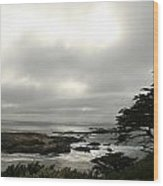 Point Lobos View Wood Print by Suzanne Lorenz