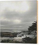 Point Lobos View Wood Print