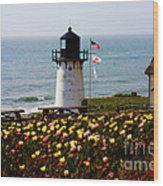 Point Montara Lighthouse Vista Wood Print