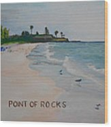 Point Of Rocks Wood Print