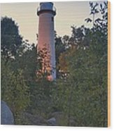Pointe Aux Barques Lighthouse 7072 Wood Print