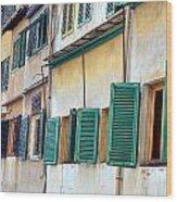 Pointe Vecchio 11 Wood Print