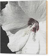 Pointillized Althea Flower Wood Print