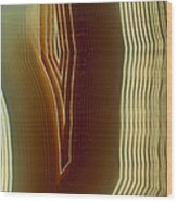 Polished Slice Of Agate Wood Print