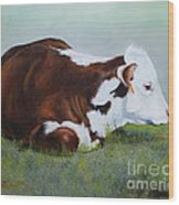 Polled Hereford Baby Wood Print