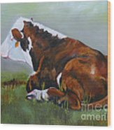 Polled Herford Baby 2 Wood Print