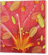 Pollen And Flower Wood Print
