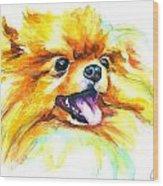 Pomeranian Fire Wood Print
