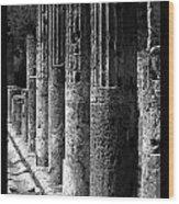 Pompeii Columns Black And White Wood Print
