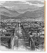 Pompeii: Ruins, C1880 Wood Print