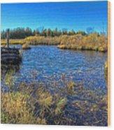 Pond 1 Today.psd Wood Print