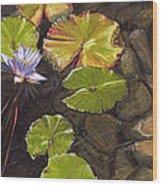 Pond Flower Wood Print