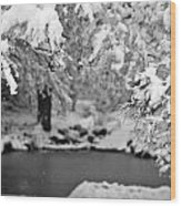 Pond Mystere Wood Print