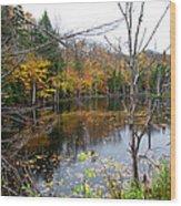 Pond On Limekiln Road Wood Print