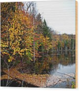 Pond On Limekiln Road II Wood Print
