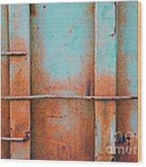 Pond Road Metal Wood Print