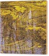 Pond Scum Three Wood Print