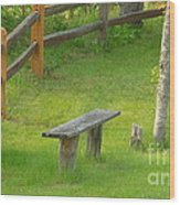 Pondering Bench Wood Print