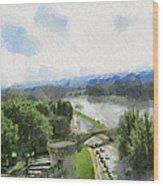 Pont De St Benezet - Avignon Wood Print