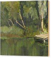 Pontoon Pond Wood Print