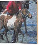 Pony Handler On Assateague Wood Print