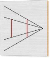 Ponzo Illusion Wood Print